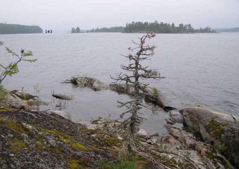 По Северному Приладожью на микрухах