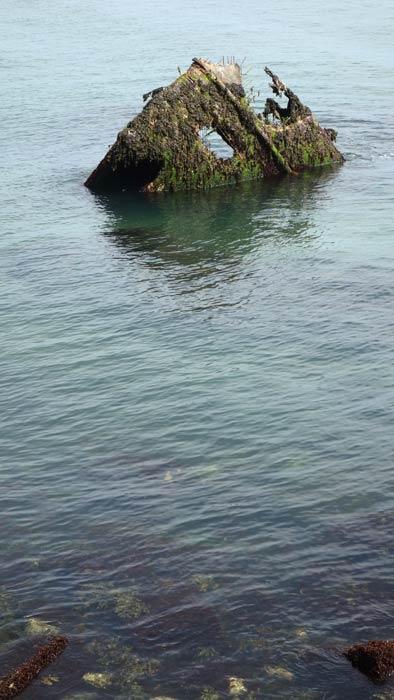 Первое плавание по Северному морю